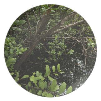 Tropical salt pond plate