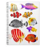Tropical Saltwater Reef Fish Notebook