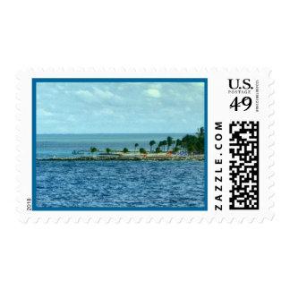 Tropical Scene Stamp