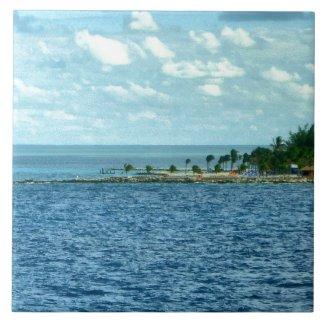 Tropical Scene Tiles