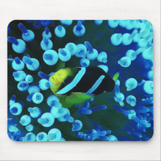 Tropical Sea Fish In Glowing Coral Mouse Pad