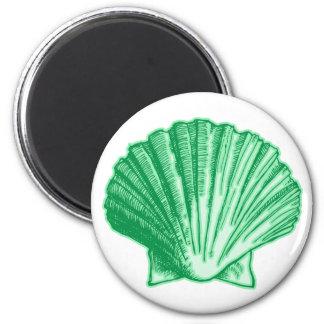 Tropical Seafoam Green Sea Shell Refrigerator Magnets