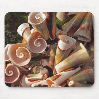 Tropical Seashells Mouse Pad