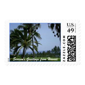 Tropical Season's Greetings Postage Stamp