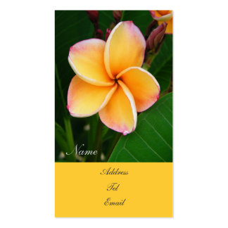 Tropical Senses Double-Sided Standard Business Cards (Pack Of 100)