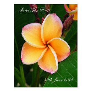 Tropical Senses - Save The Date Postcard