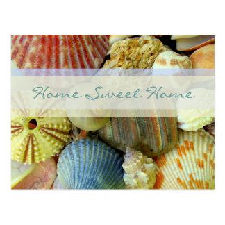 Tropical Shells New Address Postcards Postcard