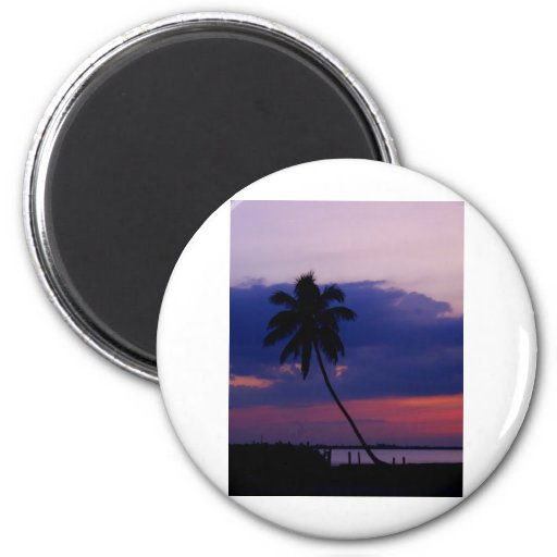 Tropical Sky 2 Inch Round Magnet