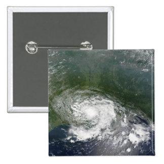 Tropical Storm Bertha Button