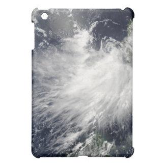 Tropical Storm Conson iPad Mini Covers