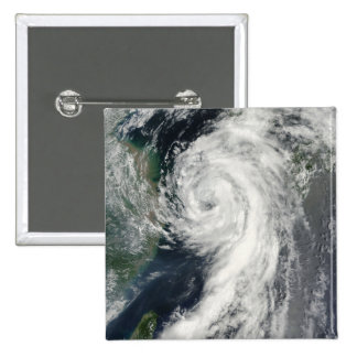 Tropical Storm Dianmu Pins