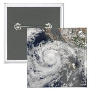 Tropical Storm Emilia Buttons
