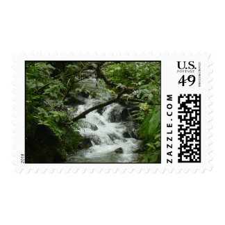 Tropical Stream Postage Stamp