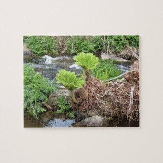 Tropical Stream Puzzle