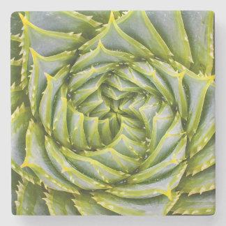 Tropical Succulent Plant Natural Stone Coaster