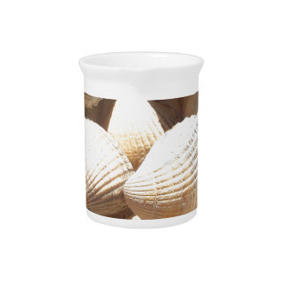 Tropical Sunny Exotic Sea Shells Drink Pitcher