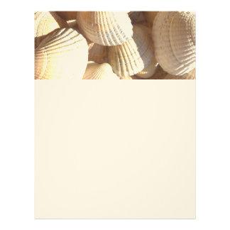 Tropical Sunny Exotic Sea Shells Letterhead