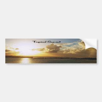 Tropical sunset bumper sticker
