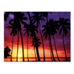 Tropical Sunset Designs Postcards