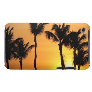Tropical Sunset iTouch Case iPod Case-Mate Case
