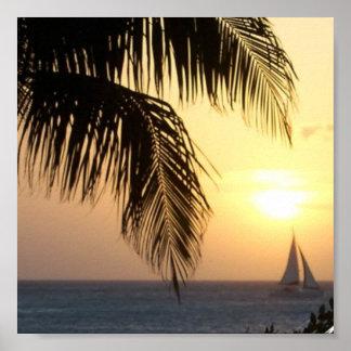 Tropical Sunset Sail Print