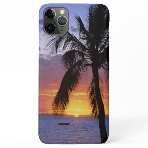 Tropical Sunset with Palm Tree iPhone 11 Pro Max Case