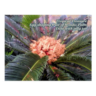 Tropical Treasure Palm Tree Postcard