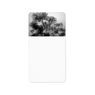 Tropical Tree Black and White in fog Custom Address Label