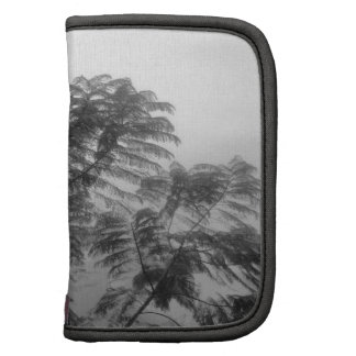 Tropical Tree Black and White in fog Organizers