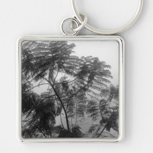 Tropical Tree Black and White in fog Silver-Colored Square Keychain