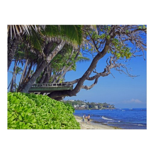 Tropical Tree Fort Posters