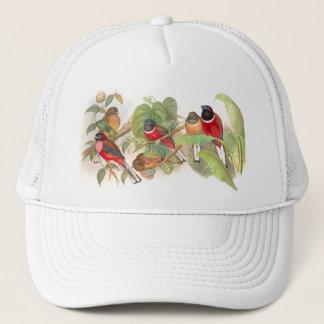 Tropical Trogan Birds Wildlife Animals Trucker Hat