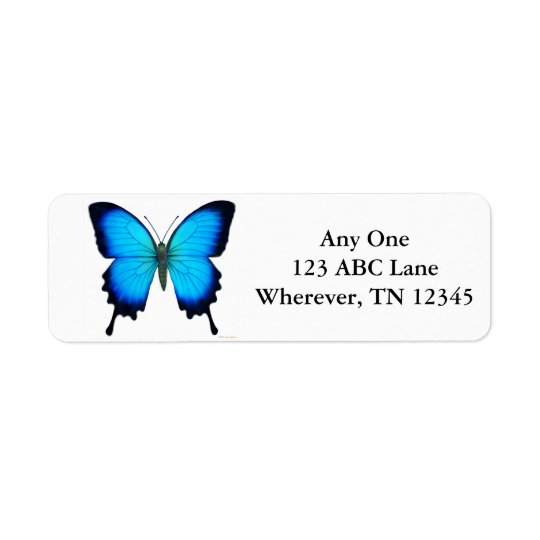 Tropical Ulysses Butterfly Label
