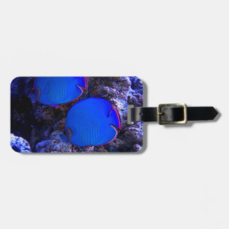 Tropical Undersea Fish Swimming In Coral Luggage Tag