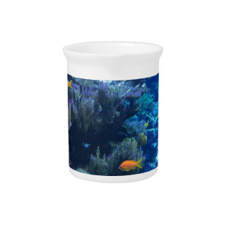Tropical underwater fish pitcher