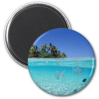 Tropical Underwater Magnet