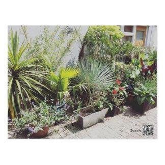 Tropical Urban Garden Postcard