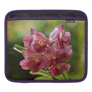 Tropical Vanda Orchid Cluster iPad Sleeves
