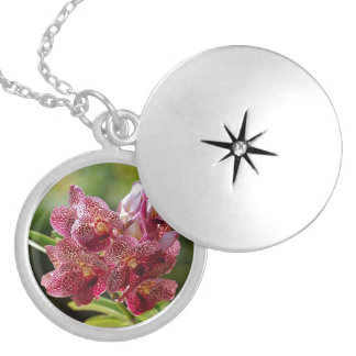 Tropical Vanda Orchid Cluster Locket Necklace