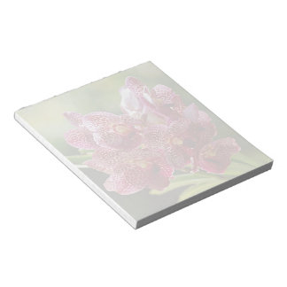 Tropical Vanda Orchid Cluster Notepad