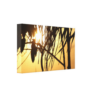 Tropical Warm Sunset Breeze/Photography Canvas Print