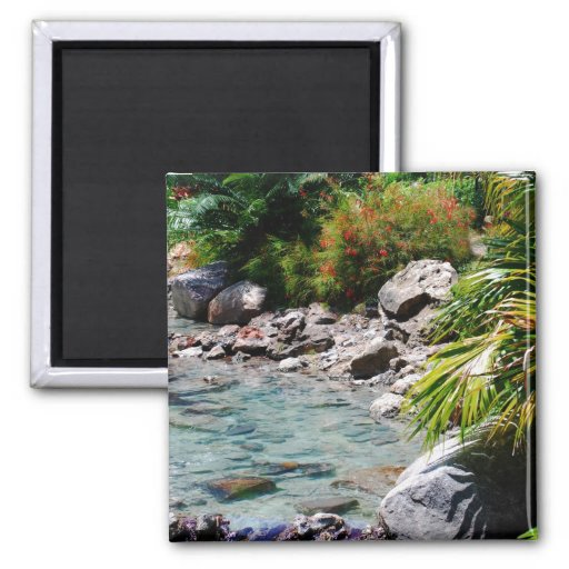 Tropical Water and Palms Fridge Magnets