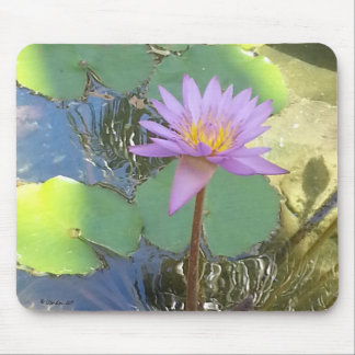 Tropical Water Lily Flower Mouse Pad