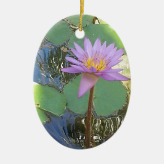Tropical Water Lily Flower Ornaments