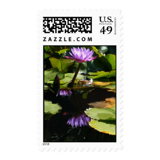Tropical Water Lily Postage Stamp