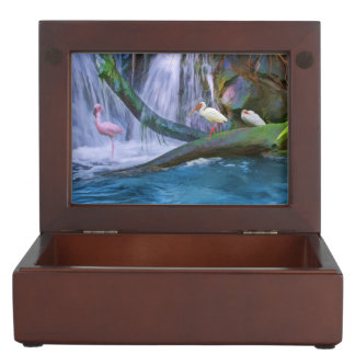 Tropical Waterfall, Flamingo, Ibises Memory Boxes