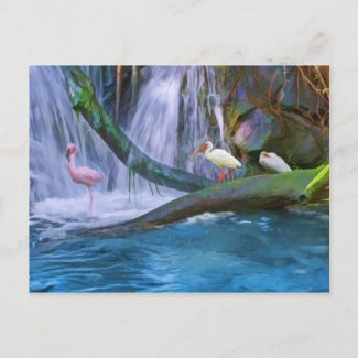 Tropical Waterfall Note or Greeting Card postcard