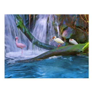 Tropical Waterfall Postcard