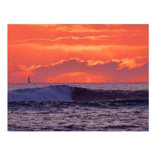 Tropical waves postcard