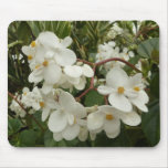 Tropical White Begonia Flowers Mouse Pad
